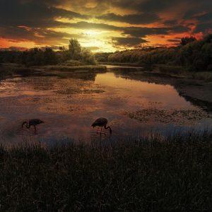 sunset-2984369_1920